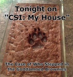 "Tonight on ""CSI: My House""..."