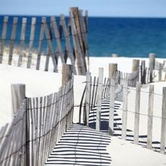 Cape Cod Snow Fence Don & # t you just want to sink your cutest sandals into that white Cape Cod sand? Snow Fence, Images Of Summer, I Love The Beach, Beach Scenes, Beach Bum, Sand Beach, Beach Walk, Beach Cottages, Coastal Living