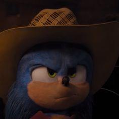 꿻뛟 (@Indigo_Wisp) / Twitter Sonic The Hedgehog, Hedgehog Movie, Hedgehog Art, Cute Hedgehog, Shadow The Hedgehog, Sonic Videos, Sonic The Movie, Sonic Funny, Twilight Princess