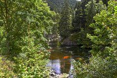 K-PIXEL-N posted a photo:  Das Okertal ist ein aus zwei Bereichen bestehendes Naturschutzgebiet in Niedersachsen und Sachsen-Anhalt, welche direkt aneinandergrenzen.  Der niedersächsische Teil liegt in den Orten Vienenburg (Stadt Goslar) im Landkreis Goslar und Schladen (Schladen-Werla) im Landkreis Wolfenbüttel, der sachsen-anhaltische Teil in der Stadt Osterwieck im Landkreis Harz. Die beiden Schutzgebiete stellen einen Abschnitt des Flusslaufs der Oker und einen Teil der Niederung unter…