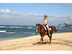 North Shore Beach Horseback Riding, Oahu / Waikiki tours & activities, things to do in Oahu / Waikiki, Hawaii | Hawaii Activities