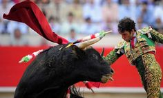 Spain Bull-Fighting by conkoo, via Flickr  Our one & only bullfight at Jerez, Spain was so horrific that people started throwing their seat cushions at the matadore. The good news is, the bull was saved to live his life in peace.