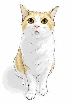 Cute Cats and Where to Find Them - Cats - Katzen Happy Art, Warrior Cats, Cat Tattoo, Crazy Cats, Animal Drawings, Pet Portraits, Cat Art, Illustration Art, Illustrations