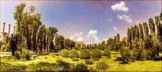 Gradina Botanica Vineyard, Outdoor, Outdoors, Outdoor Games, The Great Outdoors
