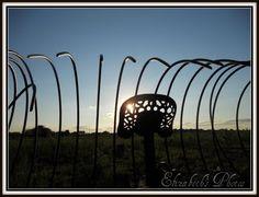 Neat sunset behind  farm equipment