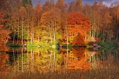 This is a gorgeous shot of Faskally Wood reflected in Loch Dunmore, Perthshire. These autumn colours even change to purples and blues during the Enchanted Forest event each year. Scotland in the fall!
