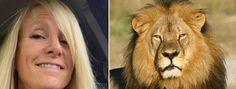 Médium afirma que leão morto mandou mensagem de otimismo