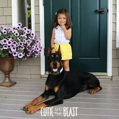 Cutie and the beast at the dentist