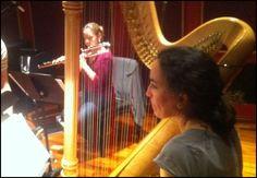 Harp Show#5