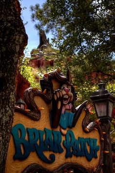 Walt Disney World - Magic Kingdom - Splash Mountain