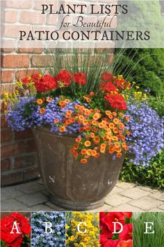 Gardening Container Plant lists for beautiful patio containers. Image by Proven Winners. - Want to know the secret to beautiful garden containers? These plant lists tell you exactly which plants you need to create these eye-catching planters. Container Flowers, Flower Planters, Garden Planters, Succulent Containers, Fall Planters, Patio Containers Ideas, Plants For Containers, Garden Yard Ideas, Garden Projects