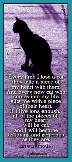 And this too can be said of dogs, for I have also had dogs..my heart is made up of little pieces of cat,dog,hamsters, birds, turtles..each life deserves to be celebrated and each passing life deserves to be mourned & remembered. Thus, they become part of your heart forever. ~ Helen