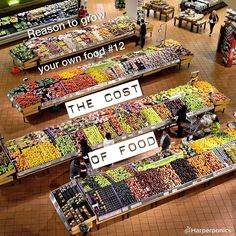 Produce cost is rising more and more and you don't trust packaged food. Growing you own is cheaper and you know exactly what's in it!