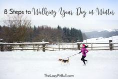 8 Steps to Walking Y