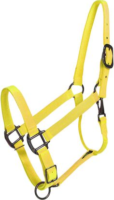 Yellow horse halter, would look awesome on my Chestnut gelding!
