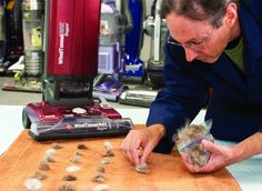 vacuuming pet hair - How Consumer Reports Tests Vacuums |Vacuum Reviews - Consumer Reports