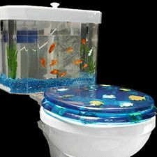 just adds a little touch of ocean life and when the goldfish die they won - Ocean Home Decor