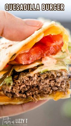 This is our healthier, copycat version of our favorite burger at Applebee's…the Quesadilla Burger! An easy sandwich with endless combinations for your summer picnics. Grilled Burger Recipes, Grilling Recipes, Meat Recipes, Mexican Food Recipes, Cooking Recipes, Cake Recipes, Mexican Meals, Mexican Dishes, Quesadilla Burgers