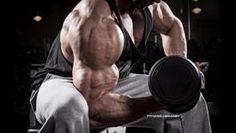 Die Wahrheit über Übertraining  - Muskelaufbau