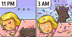 20 Illustrations That Perfectly Sum Up What Happens When You Live With a Cat