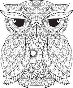 Seth Owl - Colour with Me HELLO ANGEL - coloring, design, detailed, meditation…