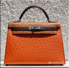13405fad501 19 Best Hermes Ostrich Bags images