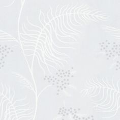 MIMOSA 69/8133 - New Contemporary Two - Cole & Son