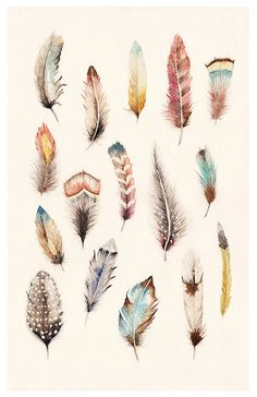 Cosas que vuelan - Things that fly by Cajavelera navegamos sueños, ilustramos historias, via Behance Feather Drawing, Watercolor Feather, Feather Painting, Feather Art, Feather Tattoos, Abstract Watercolor, Watercolor Paintings, Botanical Illustration, Watercolor Illustration