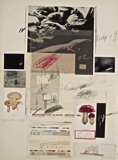 Cy Twombly, Natural History, Part 1, Mushrooms, (1974)