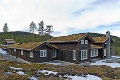 Buen Original ønsker velkommen til visning på Musdalseter i hjerte av Gudbrandsdalen. | Buen Gruppen
