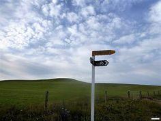 IRGENDWO IM NIRGENDWO NEUSEELANDS - WAS FÜR EINE TOLLE LANDSCHAFT - susiereist