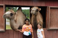 Hanging out with our Zone Mascot Camels! Only at TheZone Camp!