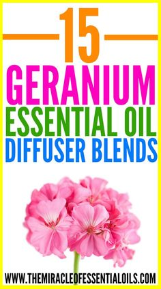 Enjoy these 15 best geranium essential oil diffuser blends for a healthy mind, body and soul! Geranium essential oil is one of the first essential oils I bought. It smells absolutely gorgeous! I love using it for my hair especially. Geranium is also all about balance. It balances the mind & emotions, hormones, oily skin …