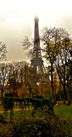 La tour Eiffel doesn't always sparkle. It does always impress. For travel Tuesday a Paris image but this is a favourite place for me to sit and read. This is taken from the Jardins du Trocadéro across the Seine from la tour Eiffel. It is a quieter part around the busy Palais de Chaillot. And it comes with a bit of a view, even on a foggy day.
