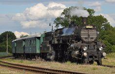 Rychlíkové lokomotivy řady 310 kkStB :: VLAKY.NET