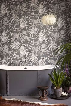 〚 Eclectic wallpaper collection Ardmore by Cole & Son 〛 ◾ Photos ◾Ideas◾ Design Eclectic Wallpaper, Wallpaper Decor, Bathroom Wallpaper, Fern Wallpaper, Bathroom Grey, Monkey Wallpaper, Animal Wallpaper, Cole Son, Cole And Son Wallpaper