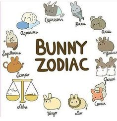 We had sheep zodiacs and now there are bunny zodiac!!! #Zodiac