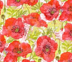 Romance Poppies Botanical Sketchbook fabric by robinpickens on Spoonflower - custom fabric