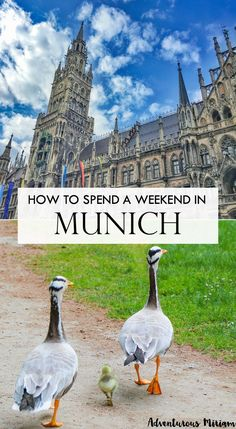 Munich, Germany is thriving. More and more people visit every year, and its walkable centre makes it an easy and popular place to visit. Throw in the famous Oktoberfest, world-class beer and Lederhosen thigh-clappers and you have an Alpine wunder-destination worthy of its unofficial title as Bavaria's capital. Here's how to spend a fun weekend in Munich.