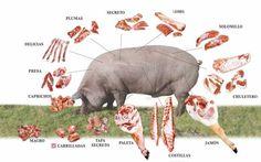 """Mitos y realidades de la carne de cerdo -  ¿Alguna vez has escuchado """"eres más malo que la carne de puerco""""? Pues esto es una gran mentira que ha dañado, en algunos casos, el consumo de la carne de este rosadito amigo. Por muchos años la carne de cerdo fue considerada como un alimento malo para la salud, con mucha grasa y no recomendado p..."""