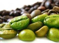 Grönt kaffeextrakt tycks hjälpa på viktminskning