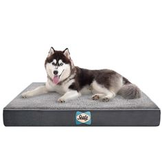 The comfortable Sealy Dog Bed is a state of the art orthopedic dog bed that is changing the lives of dogs of every size. The bed is made with cooling energy gel, PetRest memory foam, green tea orthopedic foam, and Charcoal HD Foam.