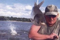 Flying Fish - The Greatest Animal Photobombs of All Time - Photos
