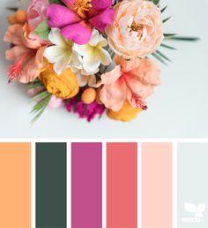 flora by , photo by . thank you, Margie, for another incredible image share! Colour Pallete, Colour Schemes, Color Patterns, Color Combos, Color Palettes, Colour Trends, Coordination Des Couleurs, Color Concept, Flora Design