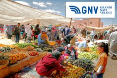 #Weekmarket in the #city of #Marrakech. #Morocco produces a #Mediterranean #fruits & #vegetables & even some #tropical ones.    Discover #GNV routes from/to #Maghreb here: http://www.gnv.it/en/      (PH Chantal de Bruijne / Shutterstock.com: http://www.shutterstock.com/gallery-309916p1.html)