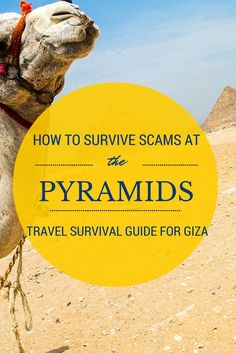 Scam at the Giza Pyramids: Beware the Camels How to prevent yourself from being scammed at Giza pyramids.How to prevent yourself from being scammed at Giza pyramids. Egypt Giza Pyramids, Cairo Egypt, Egypt Art, Places To Travel, Travel Destinations, Places To Visit, Vacation Travel, Egypt Travel, Africa Travel