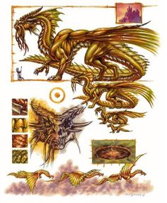 Gold Dragon Anatomy by Ron Spencer Dragon Claw, Gold Dragon, Fire Dragon, Dragon Art, Dragon Book, Dnd Dragons, Cool Dragons, Dungeons And Dragons, Fantasy Dragon
