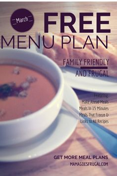 Free family friendly meal plan, with meals that can be made in just 15 minutes and freezable meals.