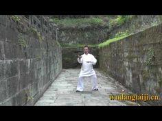 Wudang Tai Chi Basics by Master Chen Shiyu (分式 )