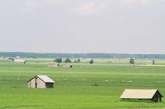 South Ostrobothnia *** http://en.wikipedia.org/wiki/Southern_Ostrobothnia